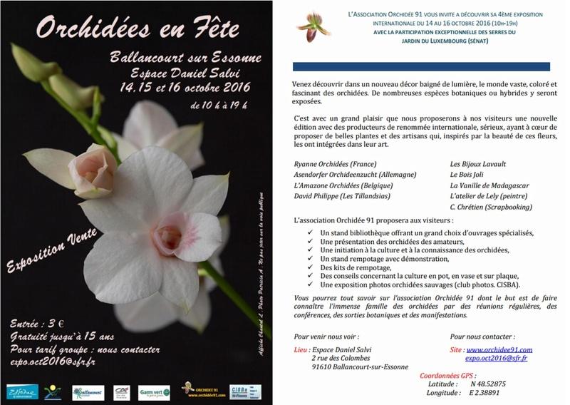 Exposition dans l'Essonne à Ballancourt les 14/15/16 octobre 2016 Ssssss10