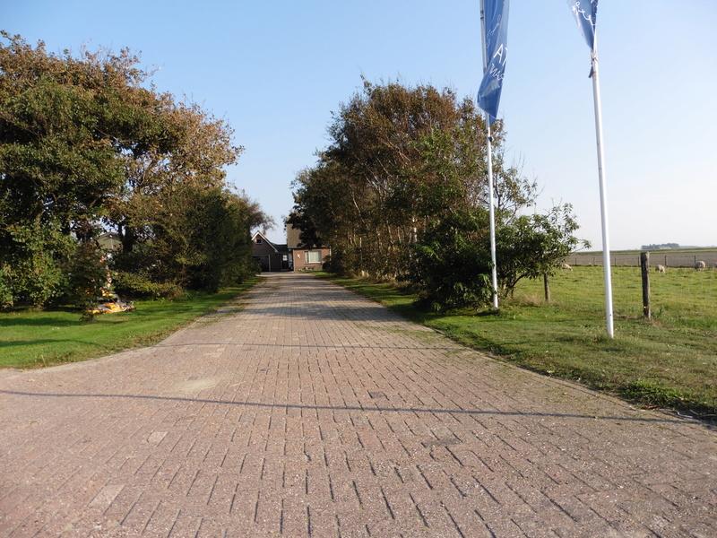 Camping à la ferme-île de Texel-Pays-Bas P1000915