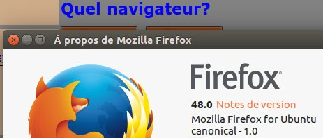 Quel navigateur? Ff4811