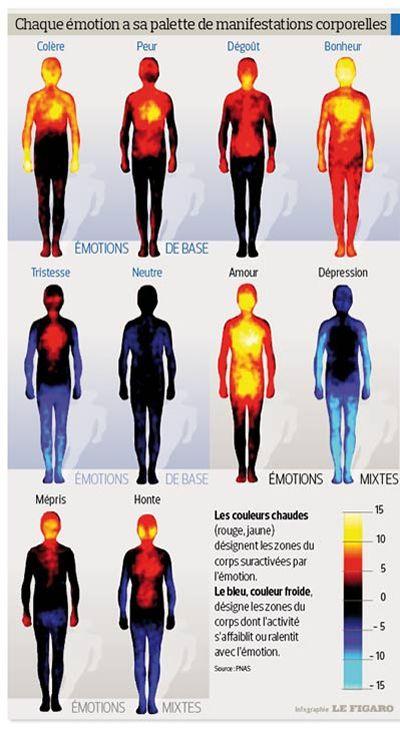 """""""La carte des émotions"""" par le Dr Lauri Nummenmaa Pho90c10"""