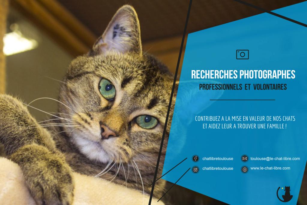 Recherche photographes animaliers bénévoles 110