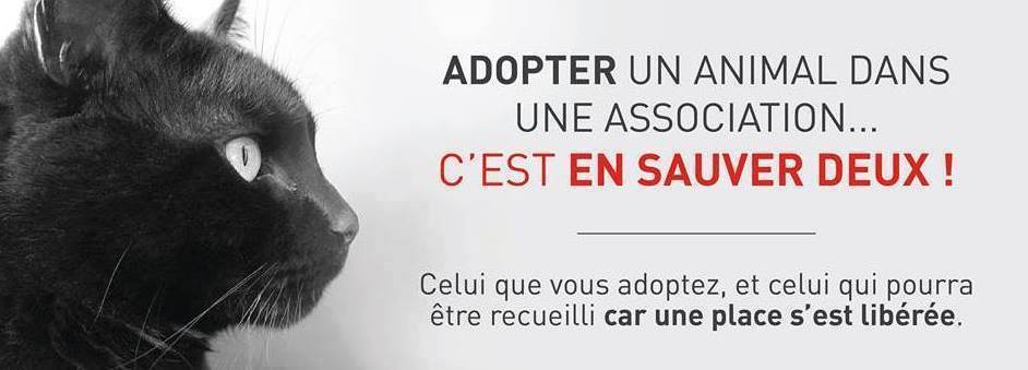 COMMENT AIDER LES ASSOCIATIONS Adopte10
