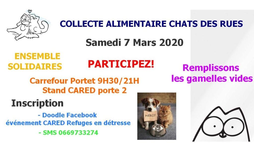 Participez aux collectes Cared 31 au profit des associations de protection animale Cared10