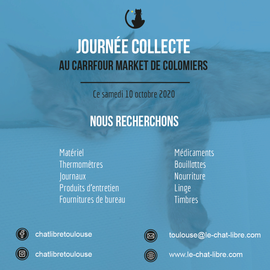 [Collecte] Samedi 10 octobre 2020 : Carrefour Market de Colomiers Collec15