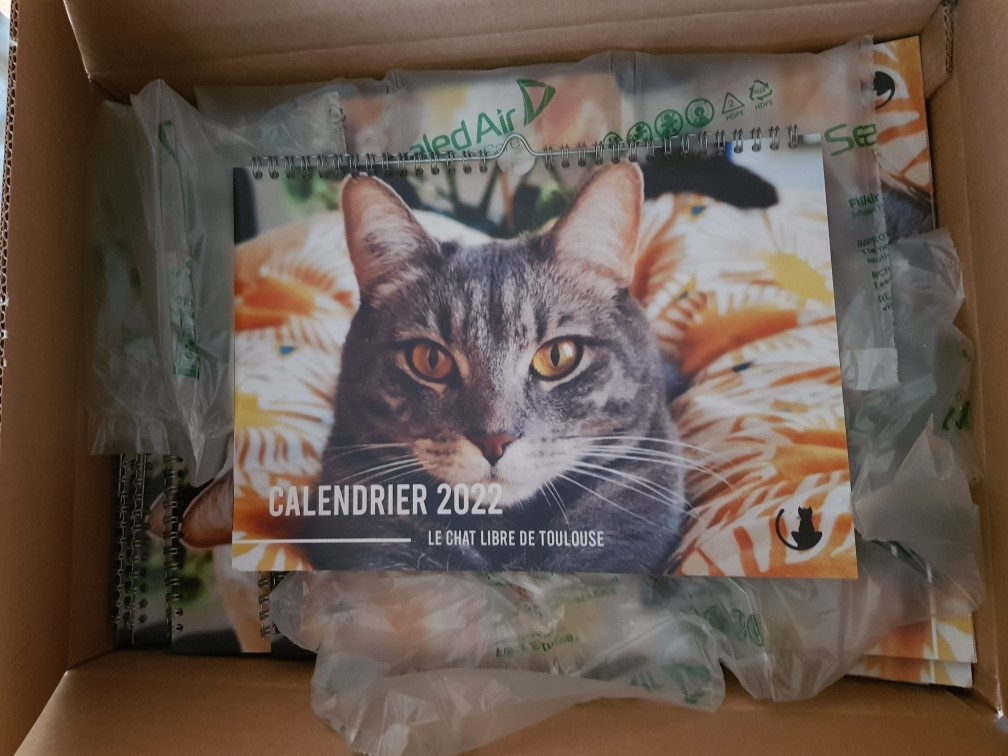 CALENDRIER 2022 Img_2350