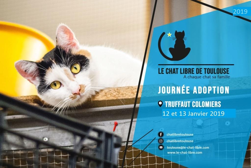 [ Adoptions ] Samedi 12 et Dimanche 13 janvier 2019 : Truffaut Colomiers Journz13