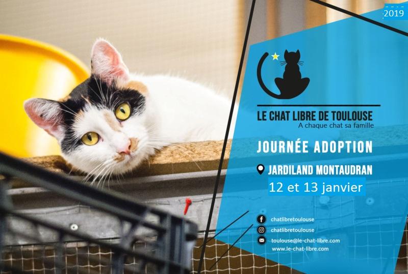 [Adoptions] Samedi 12 et dimanche 13 Janvier 2019 : Jardiland Montaudran   Journz14