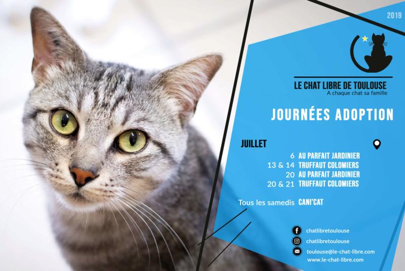 [Adoptions] Samedi 20 et dimanche 21 juillet 2019 : Truffaut Colomiers Journz20