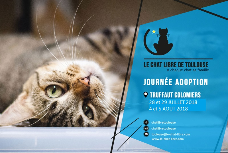 [ Adoptions ] Samedi 28 & dimanche 29 juillet 2018 : Truffaut Colomiers Truffa10