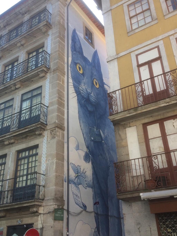 Un chat à Porto (Portugal) V_cadc10