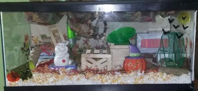 halloween tank and pop-up playground :) 20161010
