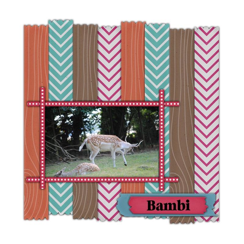 épreuve n° 39 : ruban et scotch Bambi10