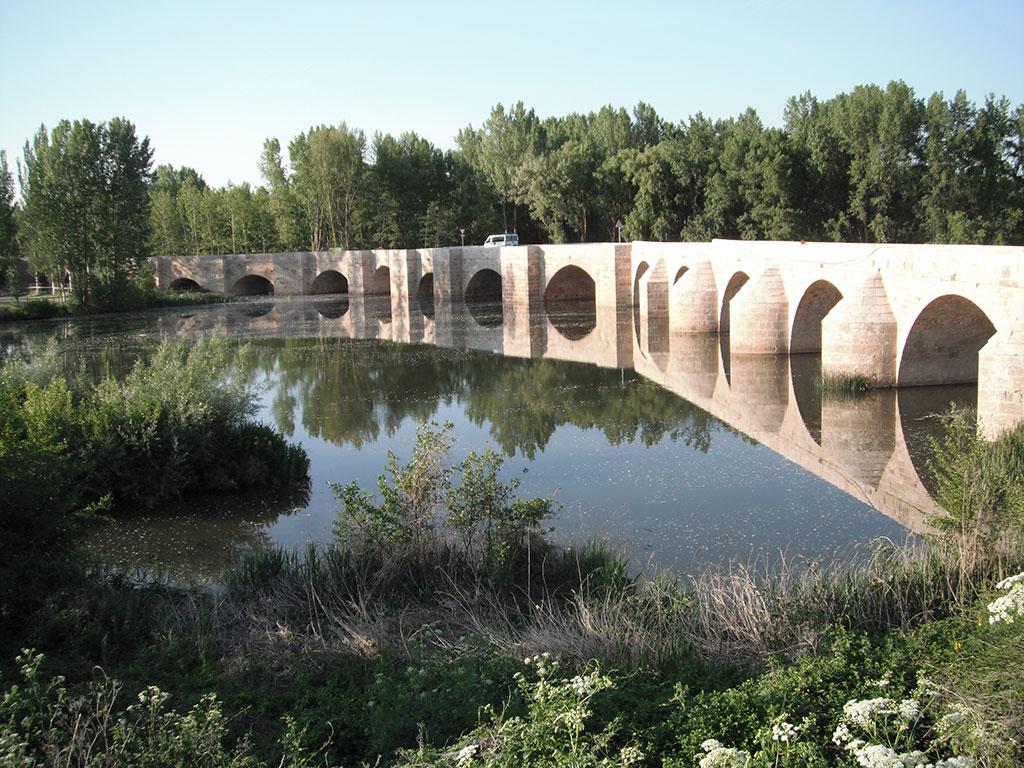 Palencia 11_110