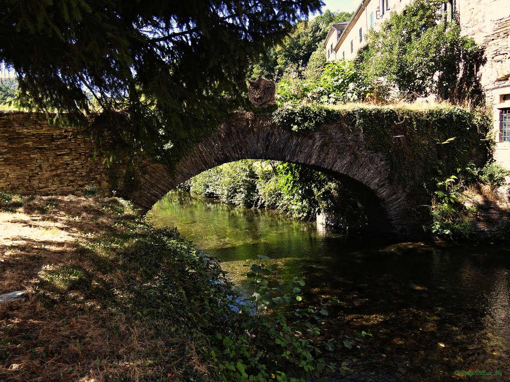 Lugo - Página 3 15370310