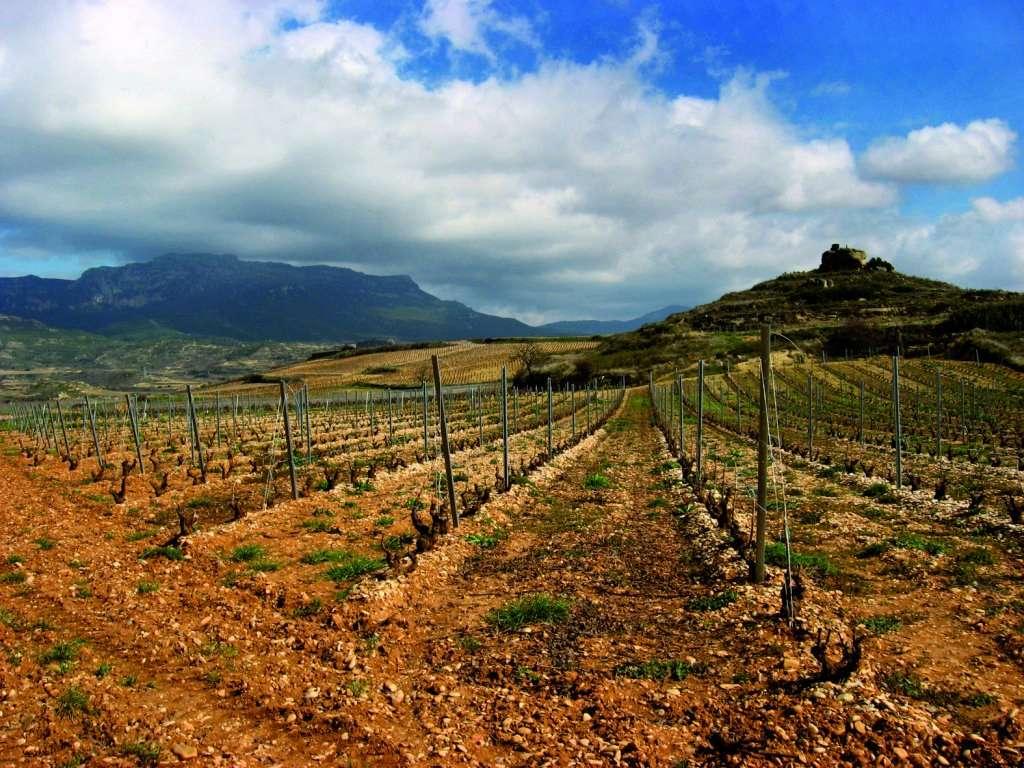 La Rioja  56883_10