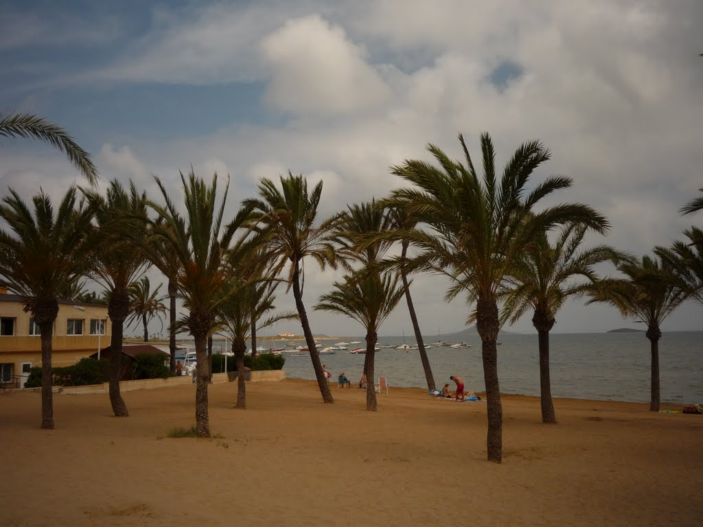 Murcia - Página 2 62117210