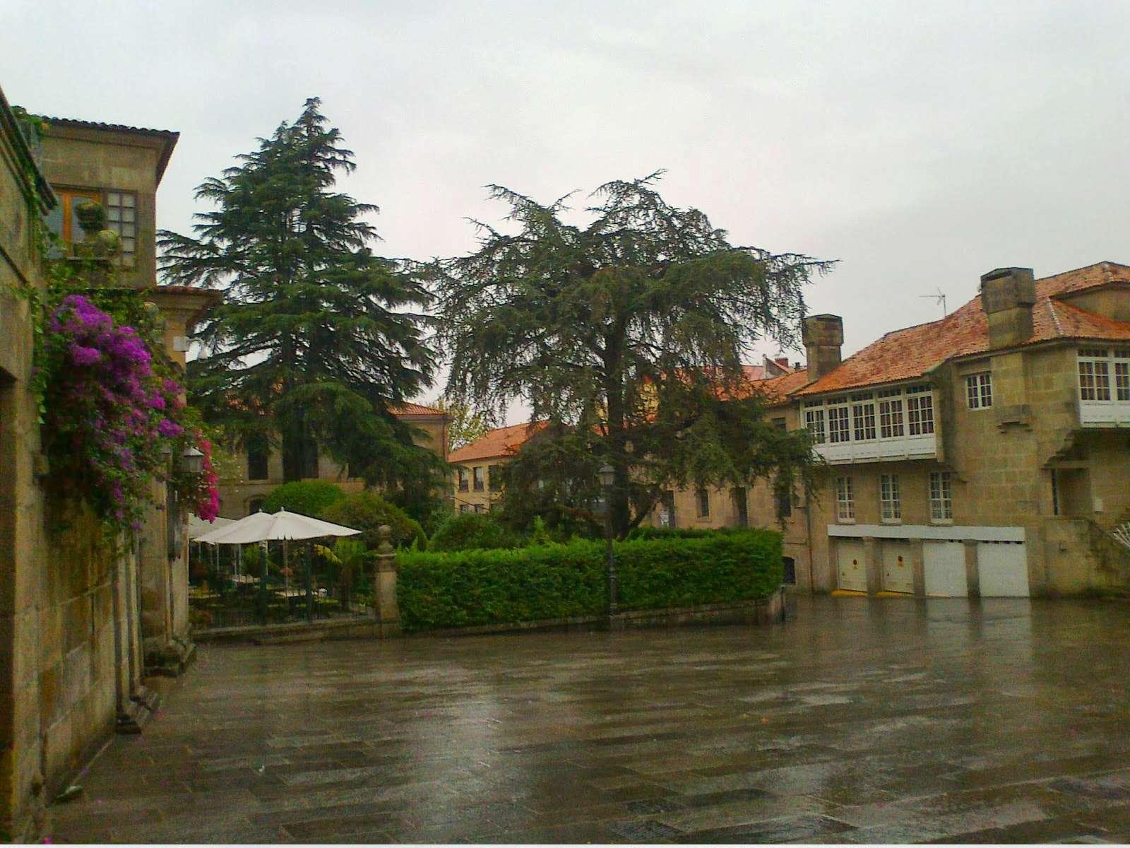 Pontevedra  - Página 3 Foto0210