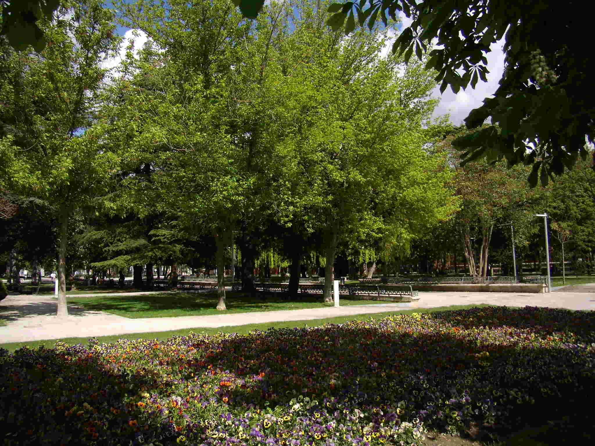 Palencia - Página 6 Parque12