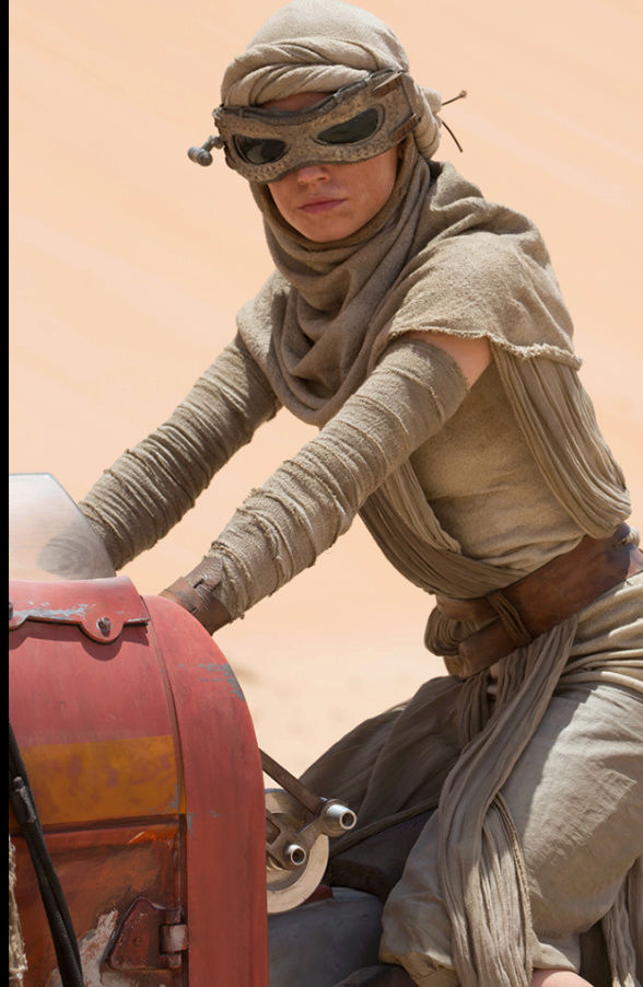 Why are Some Fans So Fixated on Rey Skywalker? - Page 7 Screen15