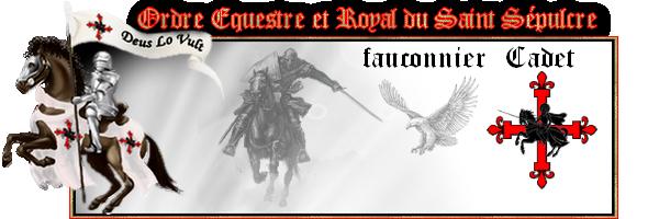 La fauconnerie Derrec11