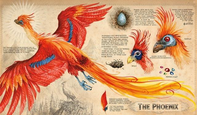 Джоан Роулинг (Joanne Rowling) - создательница Гарри Поттера (Harry Potter) - Page 3 Harry_11