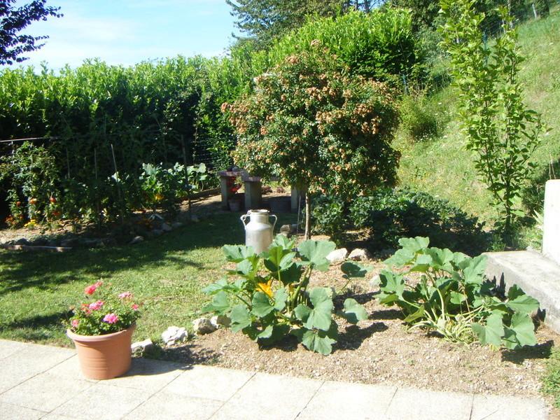 Mon ti jardinet  Maison11