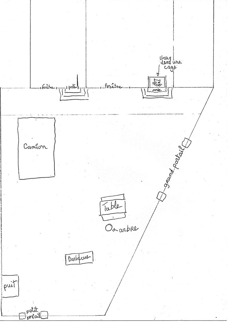 Cohabitation chien et chats - Page 16 Img00210