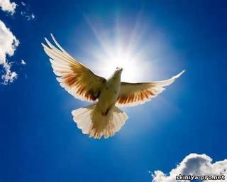 Христианские ,стихи ХВЕ о Духе Святом, о Пятидесятнице - Страница 2 Dukh10