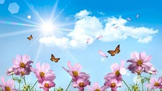 Христианские ,стихи ХВЕ о Духе Святом, о Пятидесятнице - Страница 2 Oaoppp10