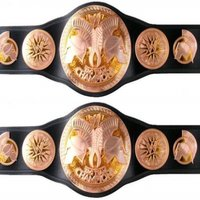 Titre Smackdown et Raw Wwe_ta13