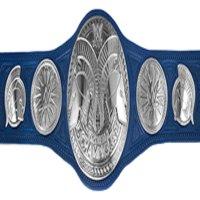 Champions Actuels Wwe_ta15