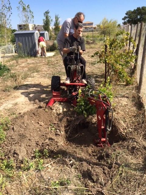 """création d'un """"jardin partagé"""" Img_1210"""