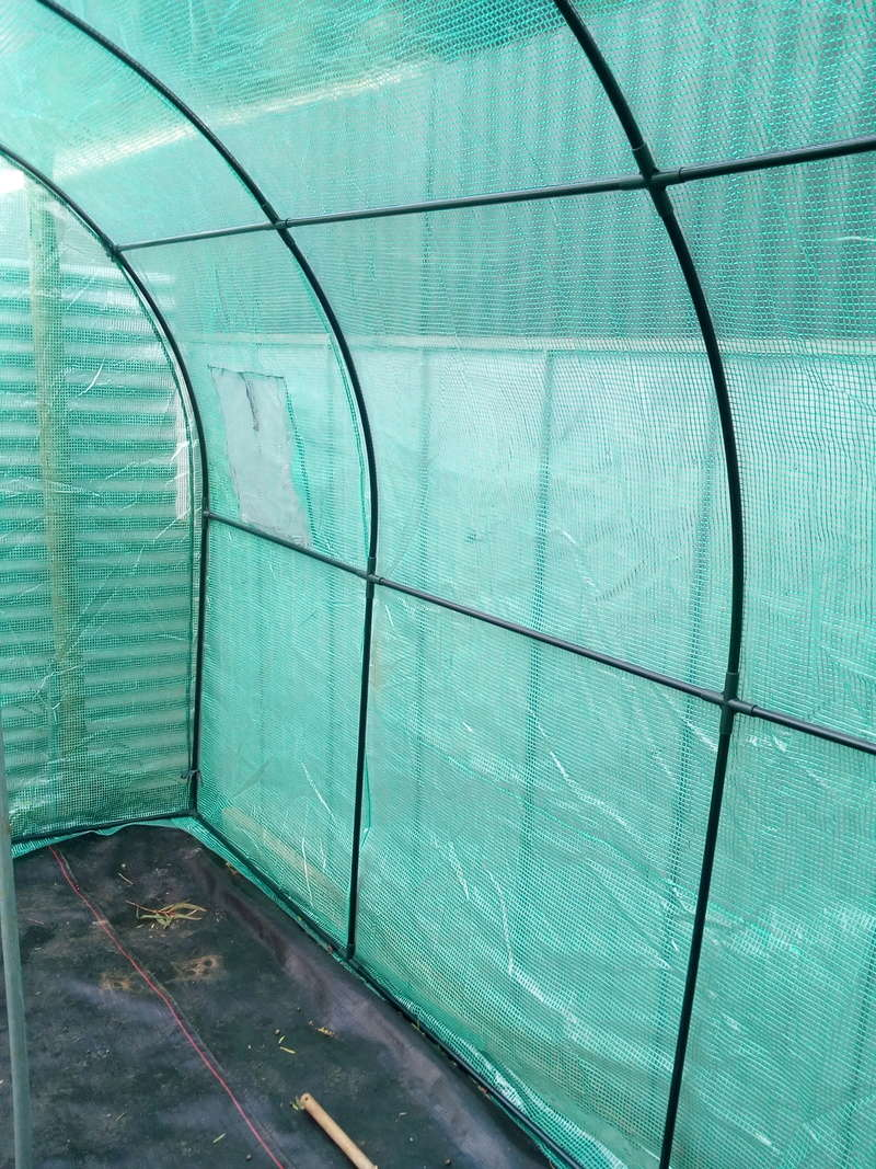 Greenhouse build Img_2016