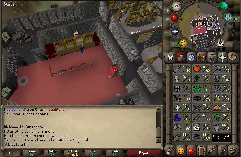 Good Loots and Goals, and Bank - iron Druid  Screen22