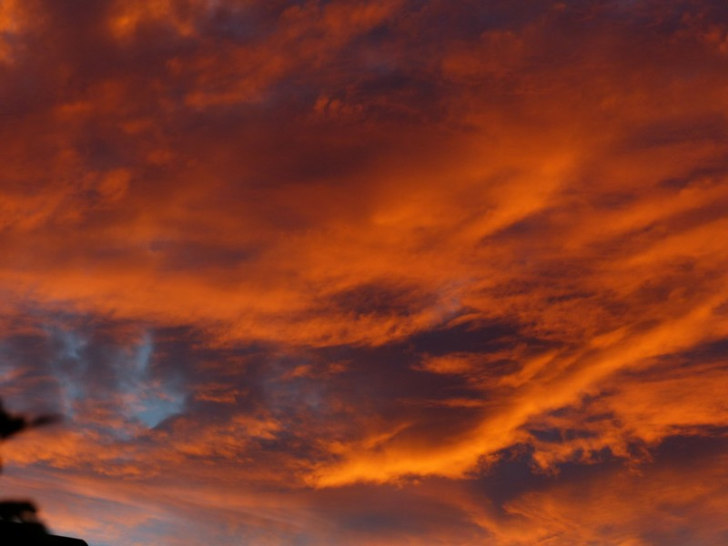 Ciel de feu - Charente Copie_11
