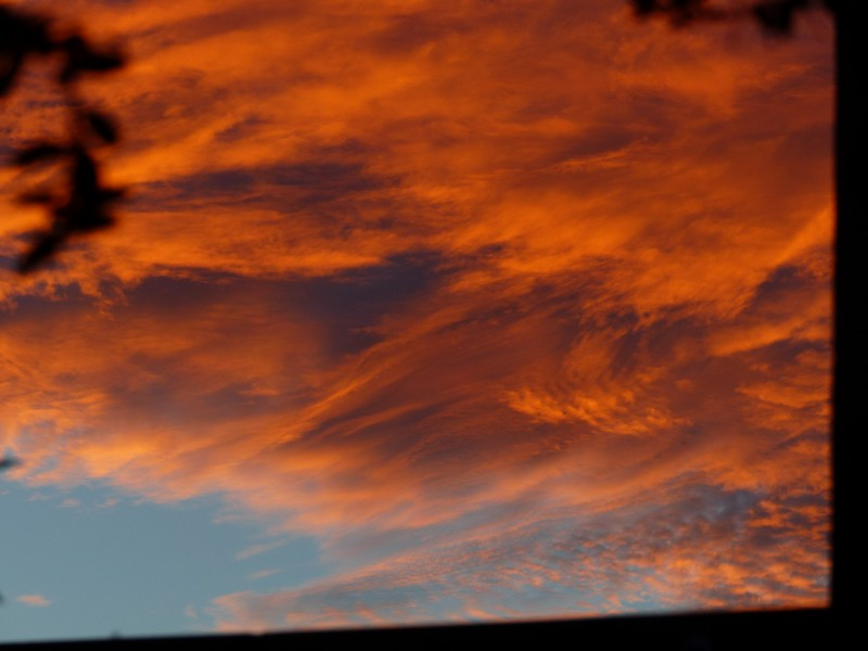 Ciel de feu - Charente Copie_12