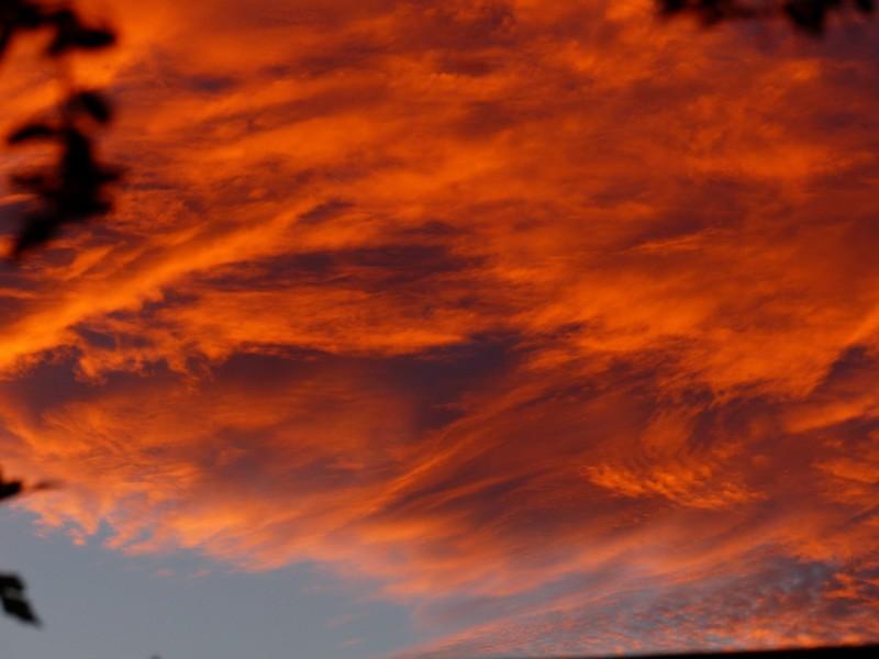 Ciel de feu - Charente Copie_13