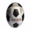 Les ballons des coupes du monde de 1930 a 2018 1970_210