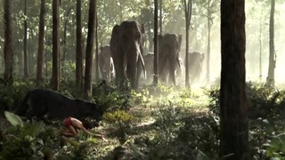 [TEST/DECOUVERTE] Jungle Book DA VS Jungle Book Live The_ju20