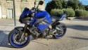 Fabien30340 - Ma race blue toute blue ... 2016-118