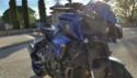 Fabien30340 - Ma race blue toute blue ... 2016-122