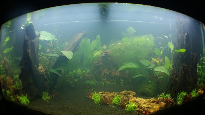 Mon RIO 180  Aqua_010