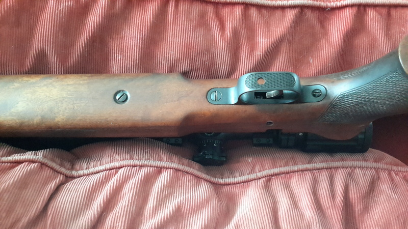 carabine anschutz 54 match 20160914