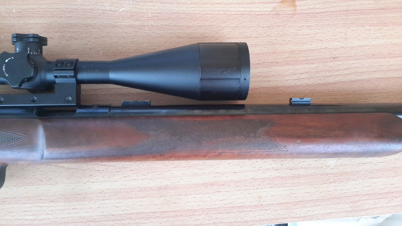 carabine anschutz 54 match 20160920