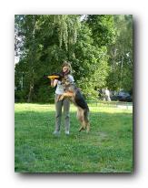 Методика обучения dog-frisbee Small_12