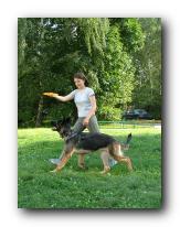 Методика обучения dog-frisbee Small_13