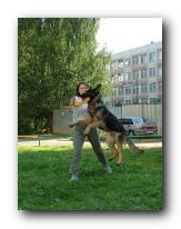 Методика обучения dog-frisbee Small_17