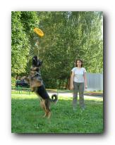 Методика обучения dog-frisbee Small_19