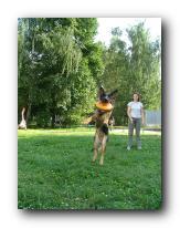 Методика обучения dog-frisbee Small_20