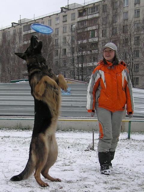Опасности игры во фризби зимой Zaika_10